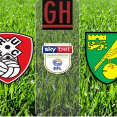 Watch Rotherham vs Norwich - EFL Championship 2020-2021, football highlights