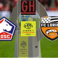 Lille vs Lorient – Ligue 1 Conforama 2020-2021, football highlights