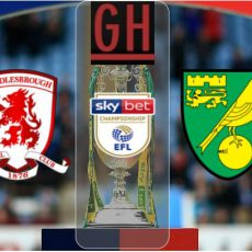 Middlesbrough vs Norwich - EFL Championship 2020-2021, football highlights